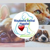 Waukesha Animal Hospital Logo