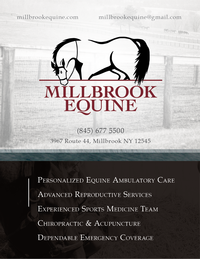 Millbrook Equine Veterinary Clinic Logo